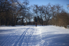 Frau geht auf schneebedeckte Straße Stockfotos