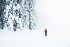 Frau geht in einen schneebedeckten Wald mit Skis im nebeligen Wetter stockfotos