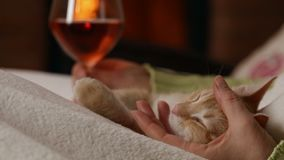 Frau genießen ein Glas Wein am Kamin stock video