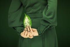 Frau in Grün 50 ` s Kleid übergibt das Halten einiger tropischer Blätter Stockbild