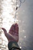 Frau hält Rosenbeet oben gegen das Funken des Seewassers bei Sonnenuntergang Stockfotografie
