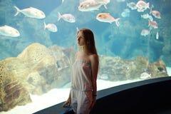 Frau im Aquarium, das auf Fischen schaut Stockfotografie
