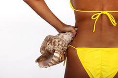 Frau im Bikini, der Meer Shell hält lizenzfreie stockbilder