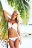 Frau im Bikini unter Palme lizenzfreie stockbilder
