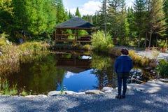 Frau im blauen Hemd erwägt ein schönes Landschaftsgestaltungsprojekt lizenzfreies stockbild