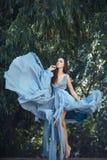 Frau im blauen Kleid im feenhaften Wald Stockfotografie