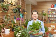 Frau im Blumenspeicher Stockbilder