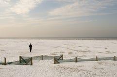Frau im Eis Lizenzfreie Stockfotografie