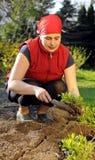 Frau im Garten Lizenzfreie Stockfotos