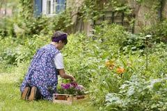 Frau im Garten Lizenzfreies Stockbild