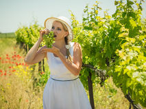 Frau im Großen weißen Hut isst grüne Trauben auf dem Feld Lizenzfreie Stockfotografie