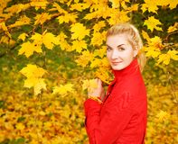 Frau im Herbstwald stockfotos