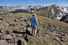 Frau im Hut Ansicht von Bergen und von alpinen wilden Blumen genießend Stockbilder