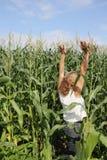 Frau im Mais. Stockfotografie
