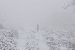 Frau im Nebel Lizenzfreies Stockfoto