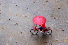 Frau im ROT in einem Herbst, der Abend regnet lizenzfreie stockbilder