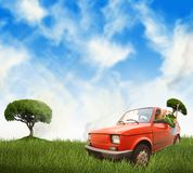Frau im roten Auto auf einer Wiese Lizenzfreie Stockfotos