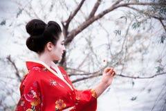 Frau im roten Kimono, der die Blume betrachtet Stockfoto