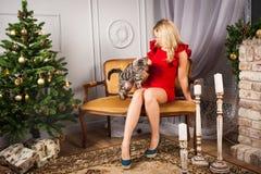 Frau im roten Kleid, das mit Katze nahe Weihnachtsbaum sitzt Lizenzfreies Stockbild