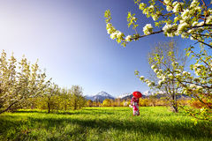 Frau im roten Kostüm an der Kirschblüte Lizenzfreies Stockfoto