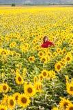 Frau im Sonnenblumenfeld Lizenzfreie Stockfotos