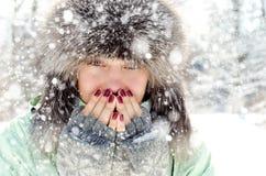 Frau im Winter lizenzfreies stockfoto