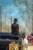 Frau im Zylinder, der auf Pferdewagen sitzt stockfoto