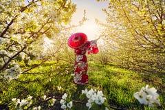 Frau in Japan-Kostüm an der Kirschblüte Stockbilder