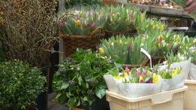 Frau kauft ein Bündel Tulpen 4K stock video footage