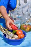 Frau konserviert Gemüse Stockfoto
