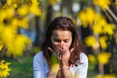 Frau mit Allergie niesend Lizenzfreie Stockfotografie