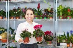 Frau mit Alpenveilchen umgeben durch verschiedene Blumen Lizenzfreie Stockbilder
