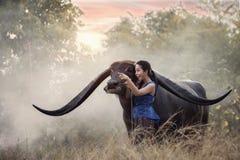 Frau mit Büffel in Thailand stockfotos