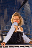 Frau mit Chihuahua. Stockfotografie
