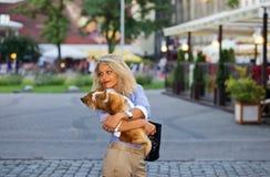 Frau mit Chihuahua. Lizenzfreies Stockbild