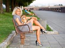 Frau mit Chihuahua auf einer Bank. Stockbilder