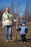 Frau mit dem Jungen, der Baum pflanzt Lizenzfreies Stockbild