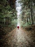 Frau mit dem roten Regenschirm, der in der Herbstlandschaft aufwirft stockfotografie