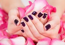 Frau mit den schönen Nägeln, die Blumenblätter anhalten Lizenzfreies Stockbild