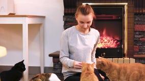 Frau mit der netten Katze, die nahe Kamin stillsteht Viele Katzen Katzendame des jungen Mädchens der alleinstehenden Frau stock video