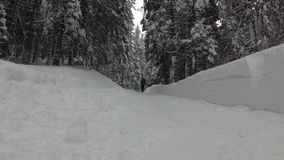 Frau mit einem Rucksack geht entlang eine Snowy-Straße im Wald stock video