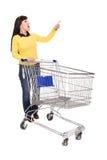 Frau mit Einkaufswagen stockfotografie