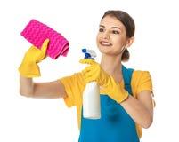 Frau mit Flasche des Reinigungsmittels und des Lappens Lizenzfreie Stockbilder