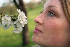 Frau mit Freckles riecht in den Apfelblüten Lizenzfreies Stockfoto