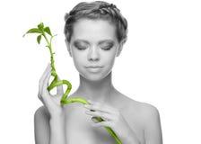 Frau mit grünem Bambus Stockbilder