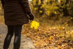 Frau mit Herbstblatt Stockbild