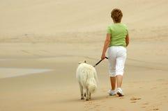 Frau mit Hund Stockfoto