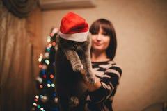 Frau mit ihrer Katze, die Santa Claus-Hut nahe Weihnachtsbaum trägt Lizenzfreies Stockfoto