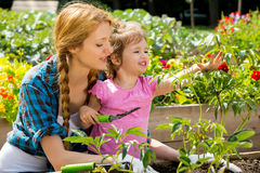 Frau mit ihrer kleinen Tochter im Garten Stockbild