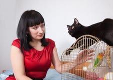 Frau mit Katze und Papageien Stockfoto